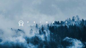 Visual design for Primare