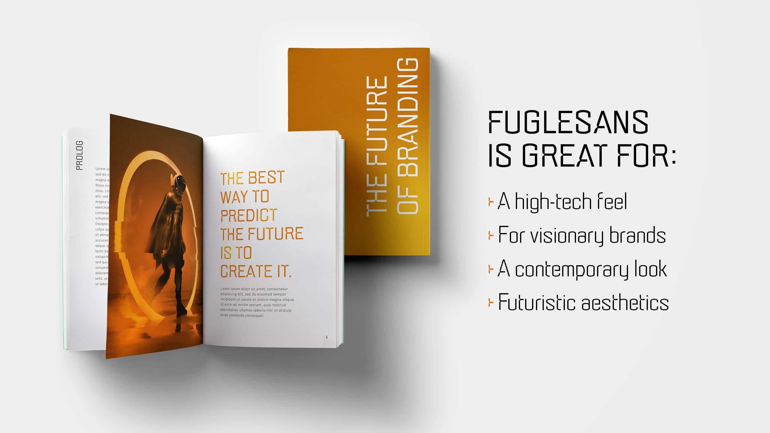 Marketing image for the font Fuglesans, book mockup.