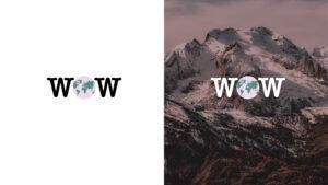 Short logo versions for Wille Worldwide.